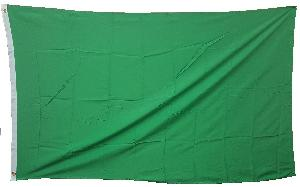 3X5 FLAG - SOLID GREEN