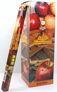 INCENSE 8PK APPLE CINNAMON