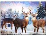 3d ART PICTURE - DEER GROUP