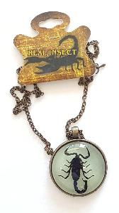 REAL SCORPION ROUND PENDANT NECKLACE